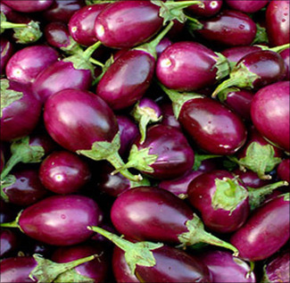 Brinjal(Egg Fruit)